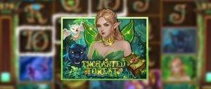 รีวิวเกมสล็อต Enchanted Forest